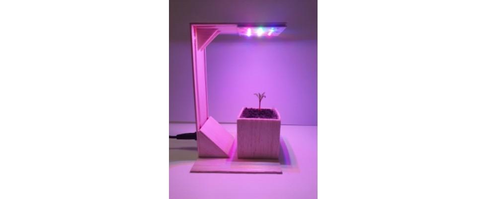 Horiculture Lamp